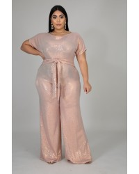 PLUS SHIMMERY JUMPSUITS